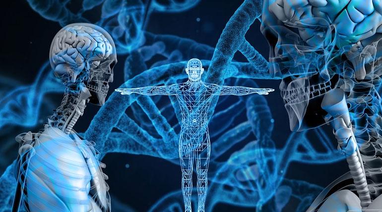 Gene: CRISPR Technology. Representation Image. MaxPixel